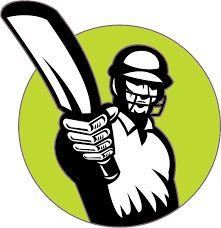 Cricket logo 1