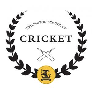 Cricket logo 3