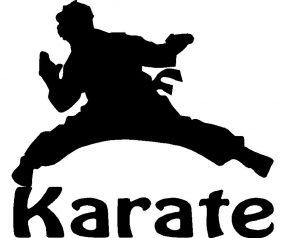 voorbeeld logo karate