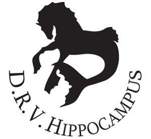 voorbeeld logo paardrijden