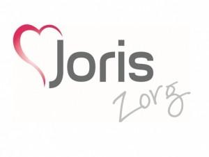 voorbeeld verpleegkundige logo