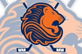 ijshockey logo voorbeeld