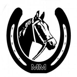 logo paardrijschool