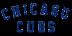 voorbeeld baseball logo