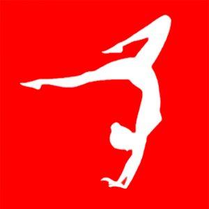 voorbeeld gym logo