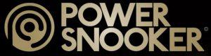 voorbeeld van een snooker logo