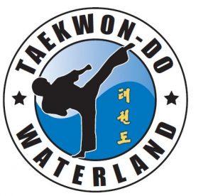 voorbeeld van een taekwondo